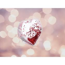 Snježno srce I SK02